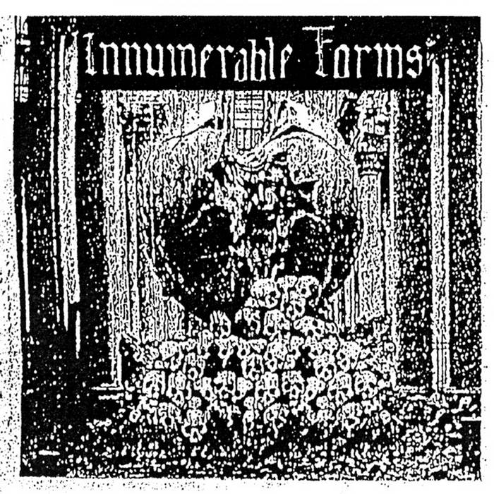 INNUMERABLE FORMS - Despotic Rule CS