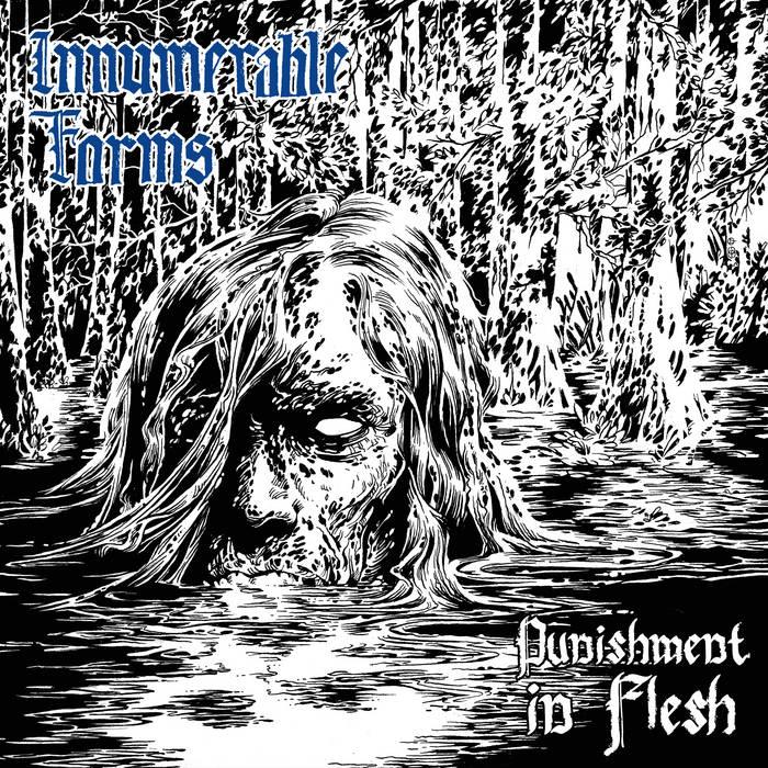 INNUMERABLE FORMS - Punishment In Flesh CS