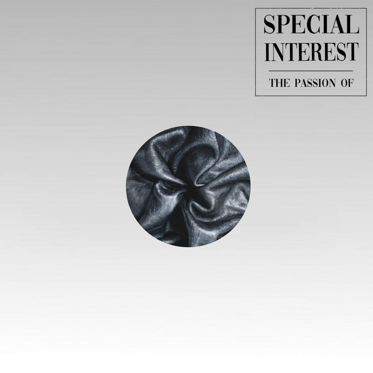 Special Interest - The Passion Of... LP