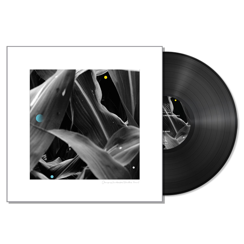 Arthur King - Changing Landscapes (Wauters Farm) - Black LP