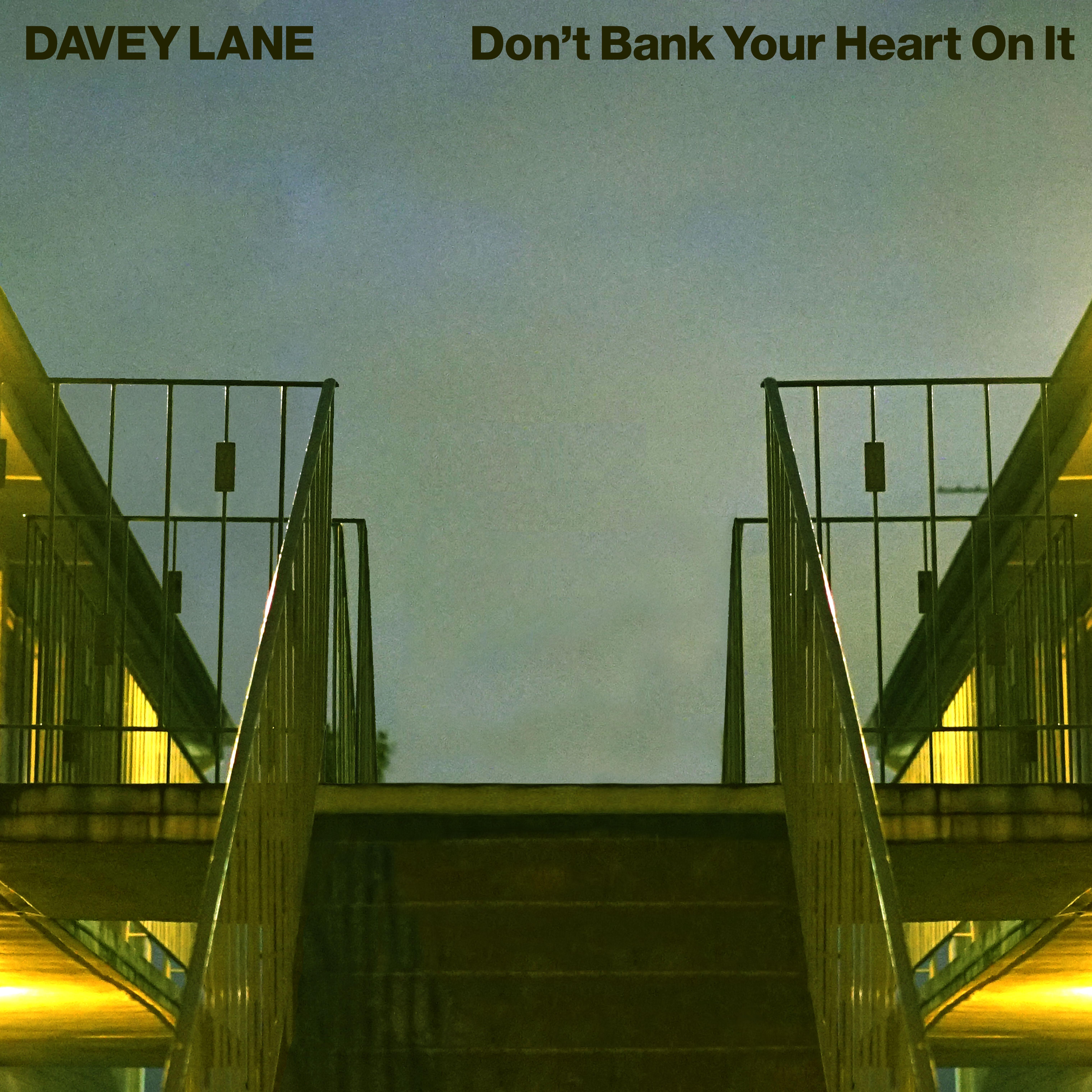 Don't Bank Your Heart On It - 12' vinyl record - Black Vinyl