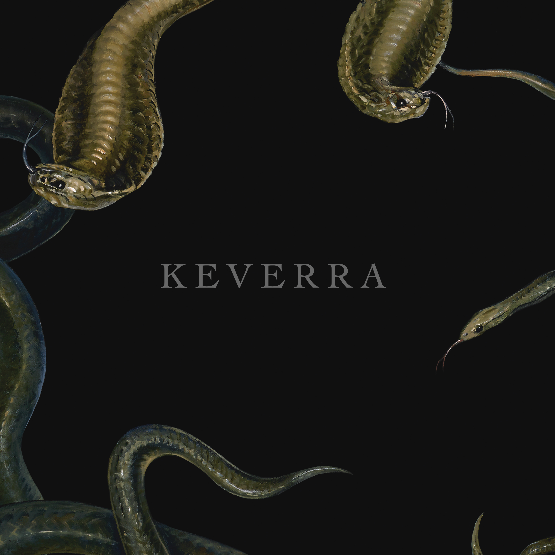 KEVERRA - S/T