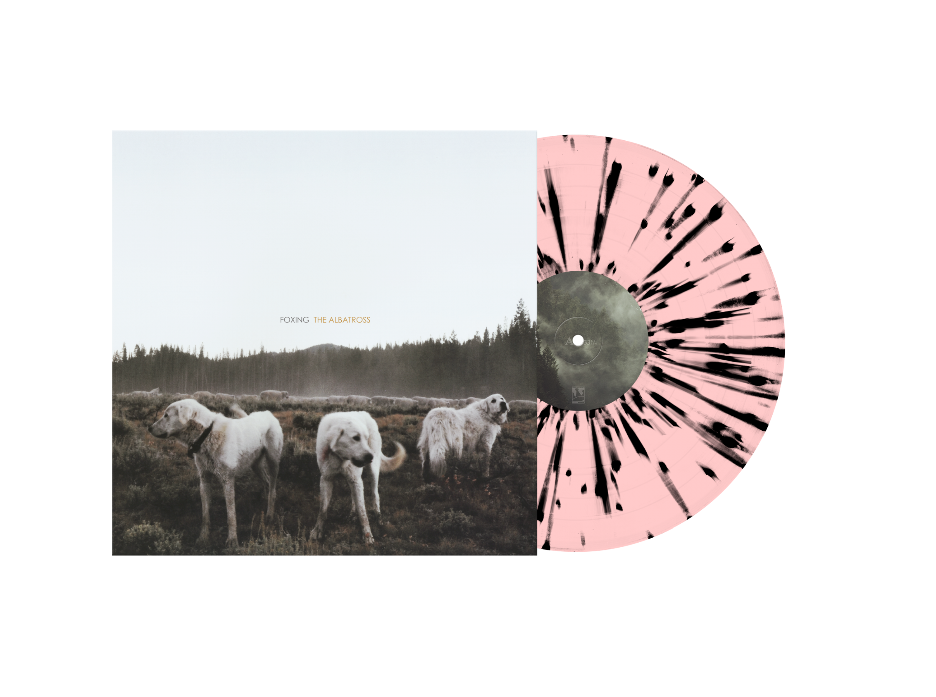 Foxing The Albatross Splatter Vinyl