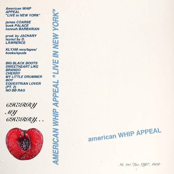 American Whip Appeal - Live in New York