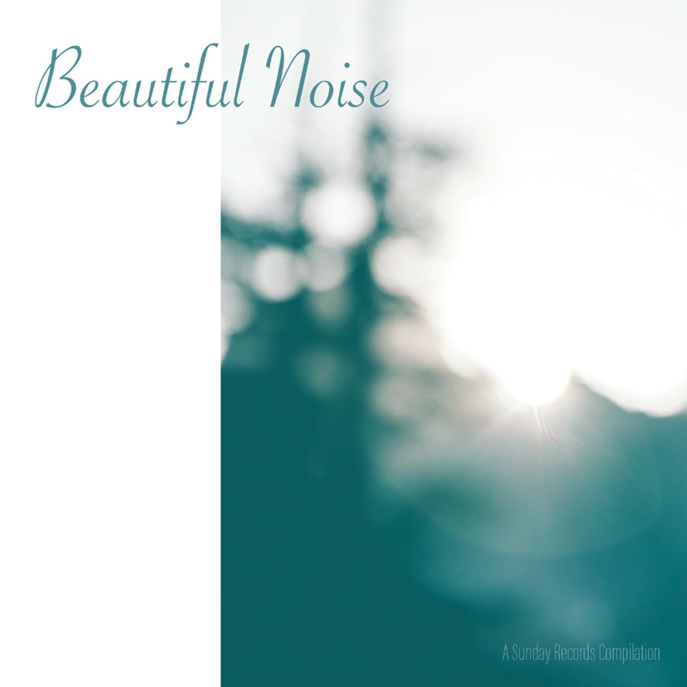 Beautiful Noise