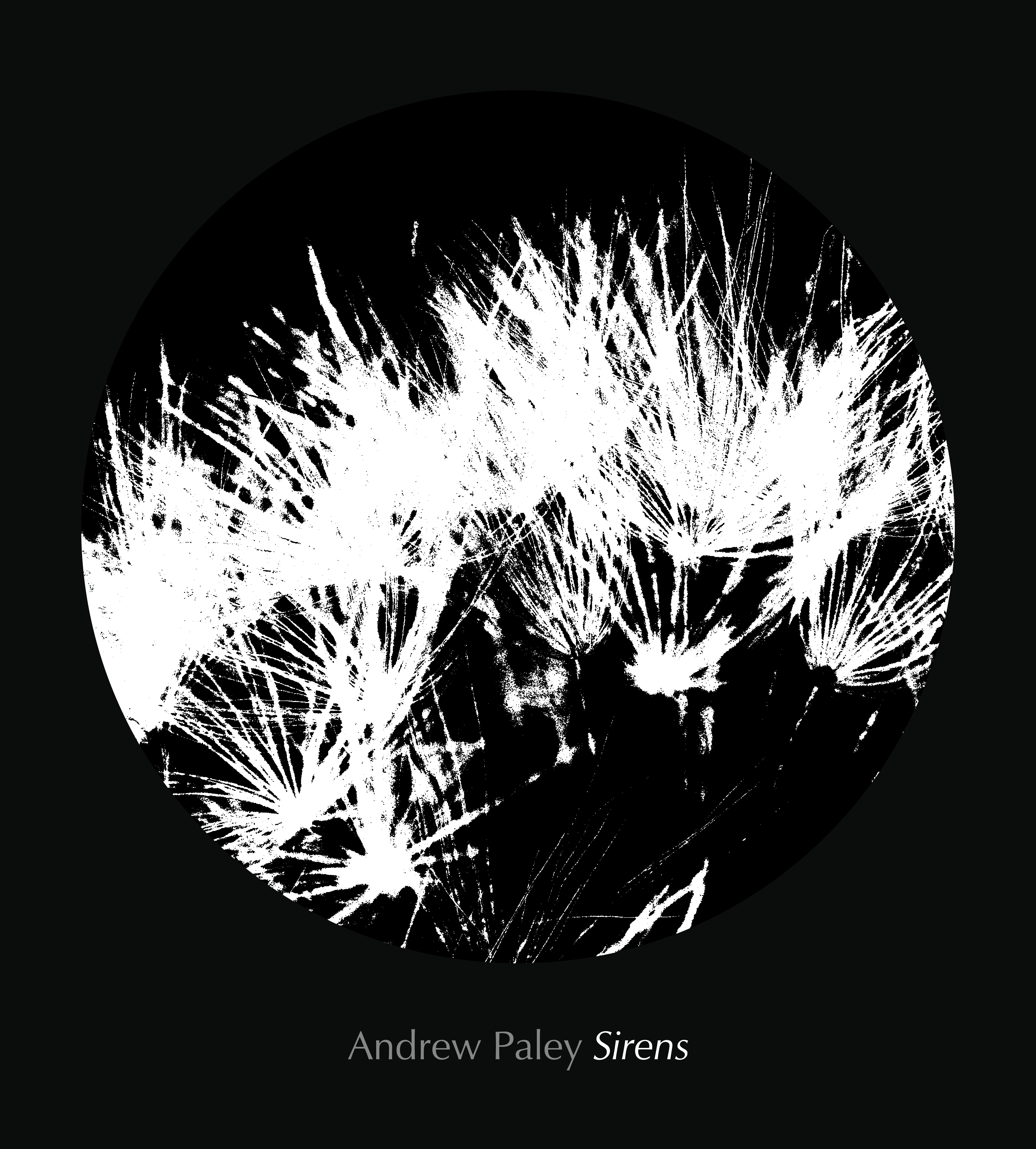 [JUST ADDED!] Andrew Paley