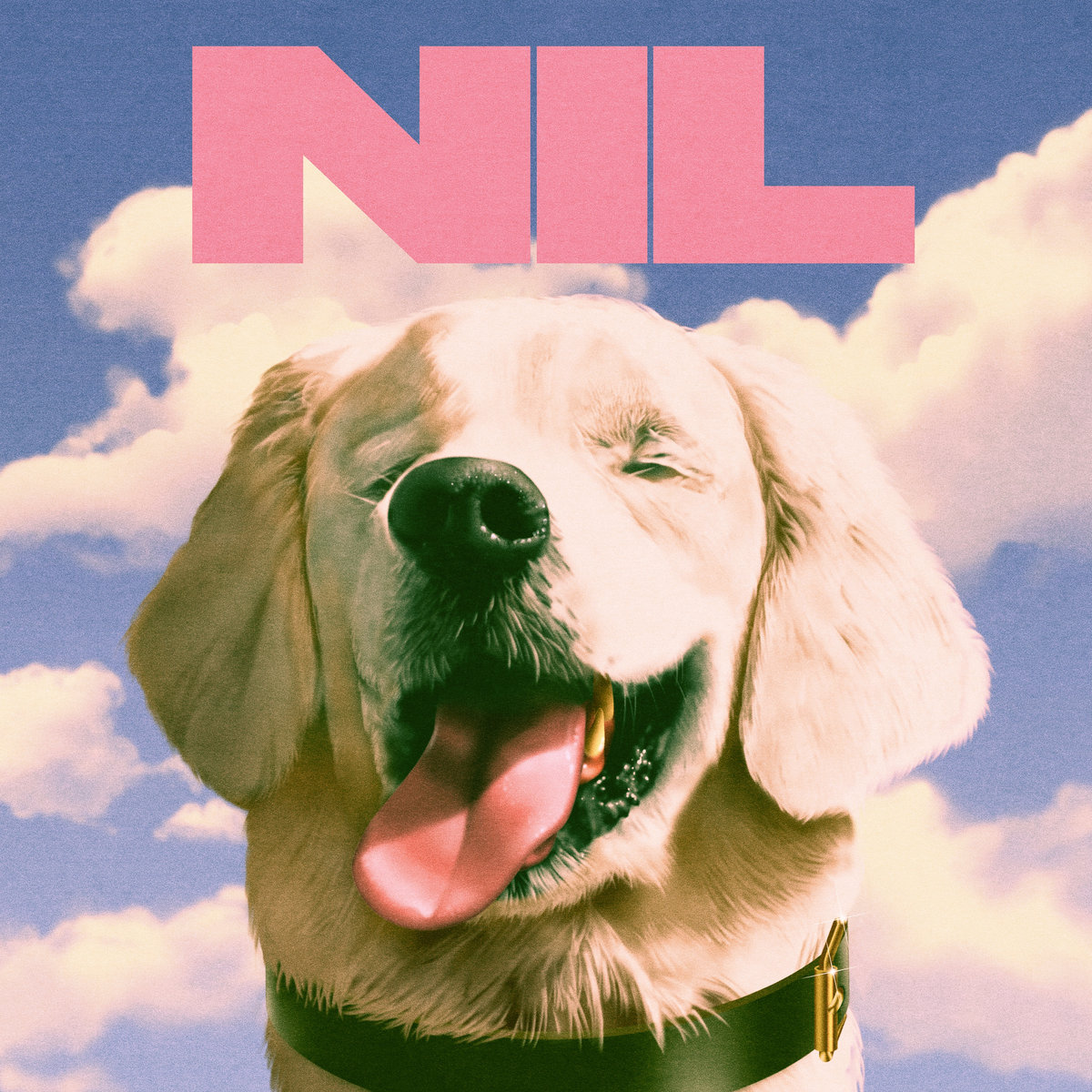 The Dirty Nil - Fuck Art LP