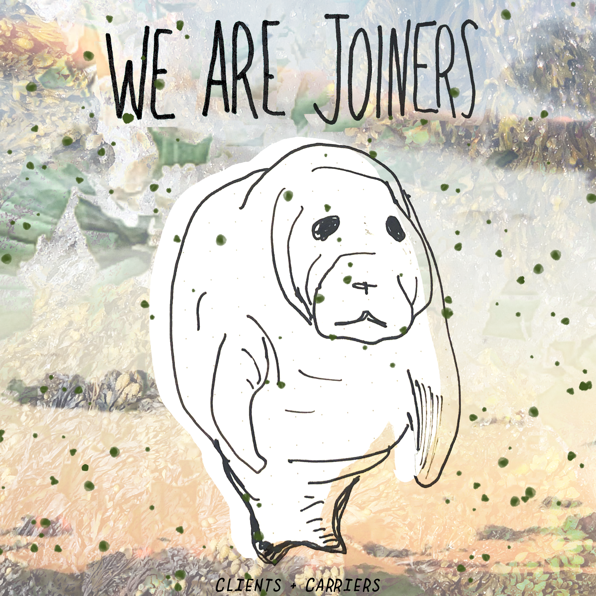 WE ARE JOINERS - Clients + Carriers