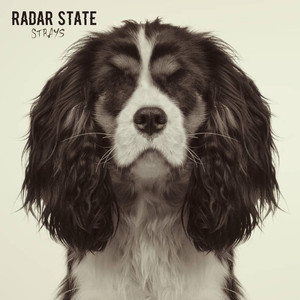 Radar State – Strays