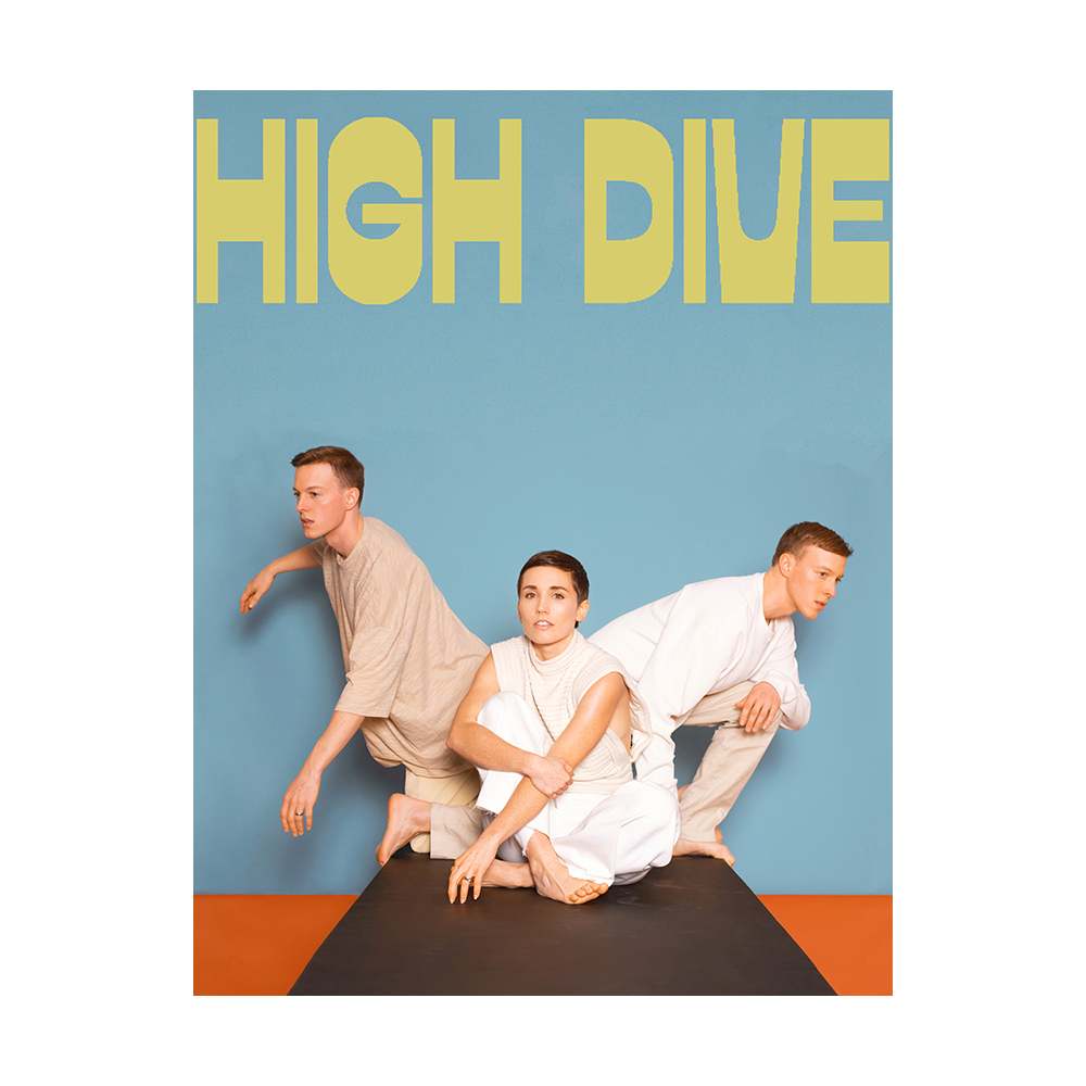 Signed High Dive Poster