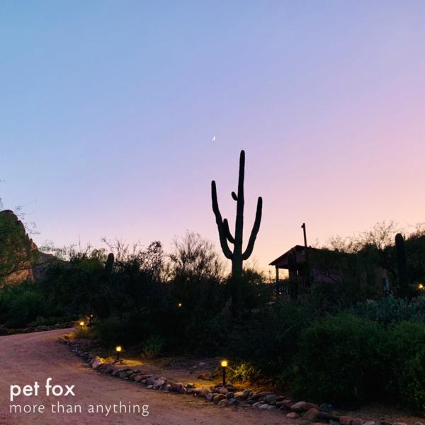 Pet Fox - More Than Anything