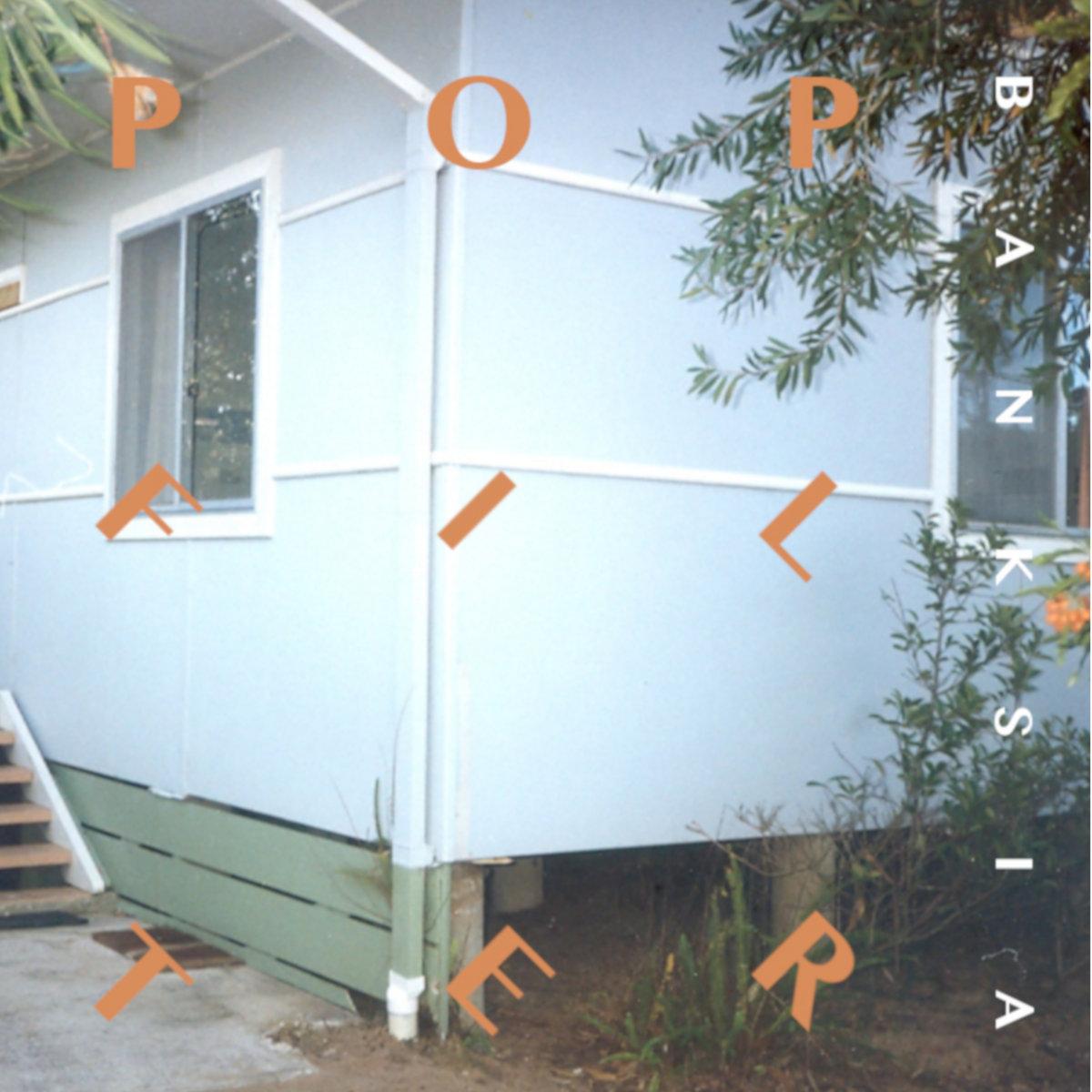 Pop Filter - Banksia