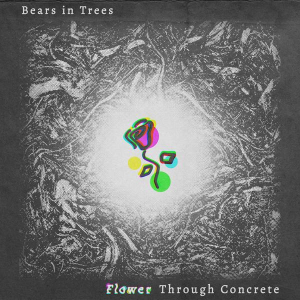 Bears In Trees - FTC
