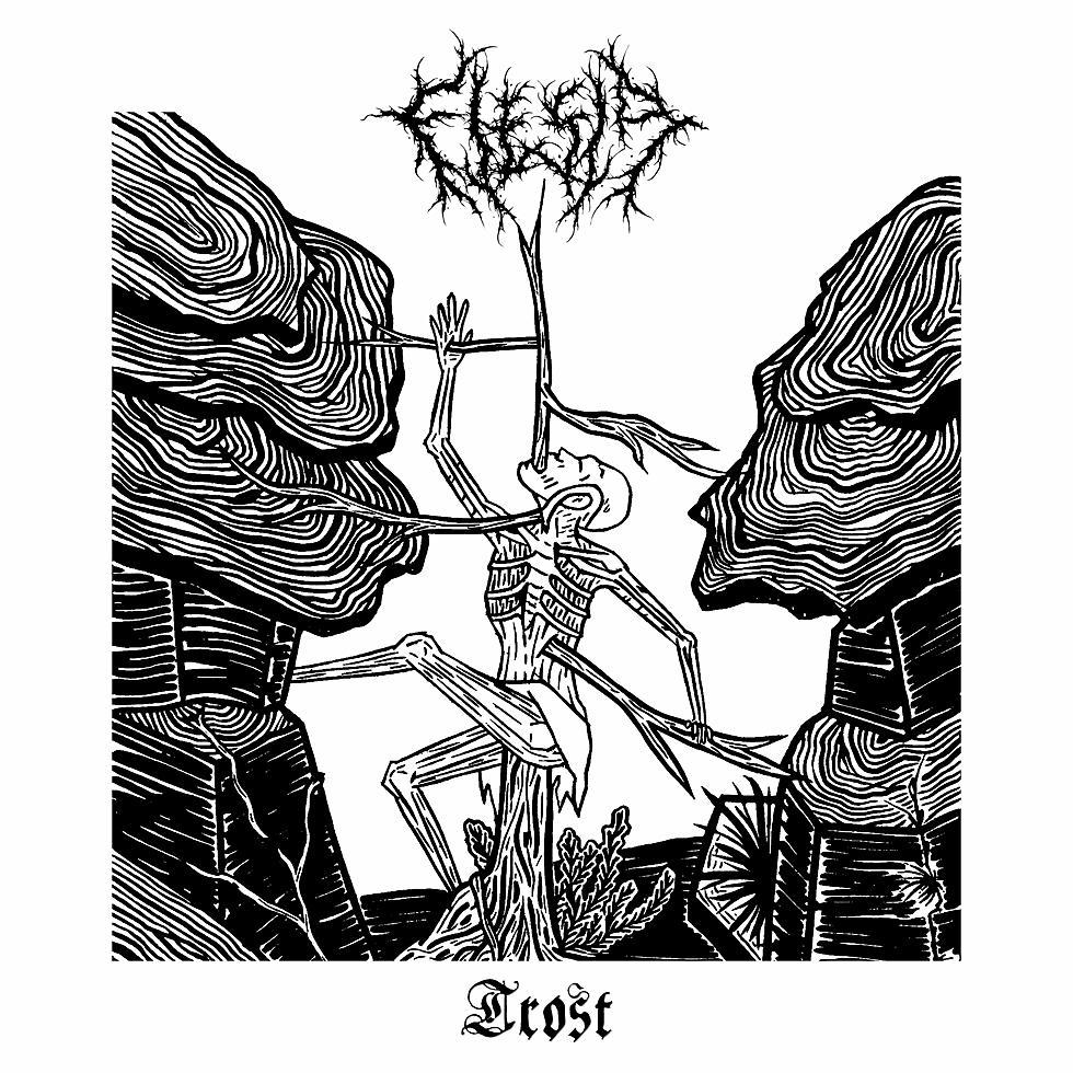 FLESIA - Trost LP