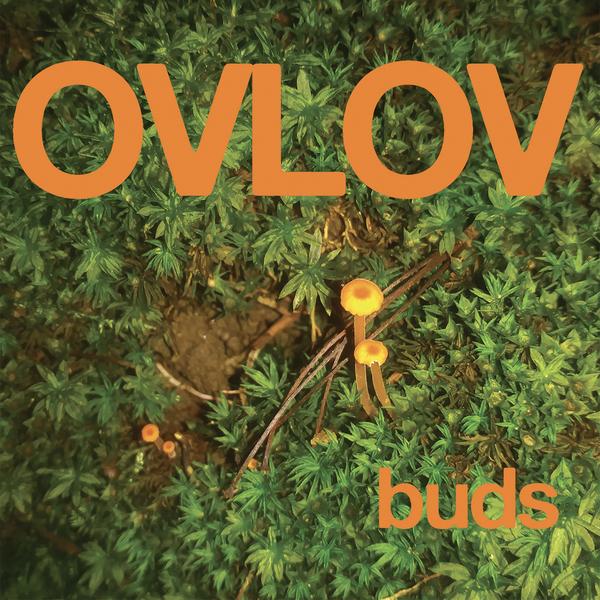 Ovlov - Buds