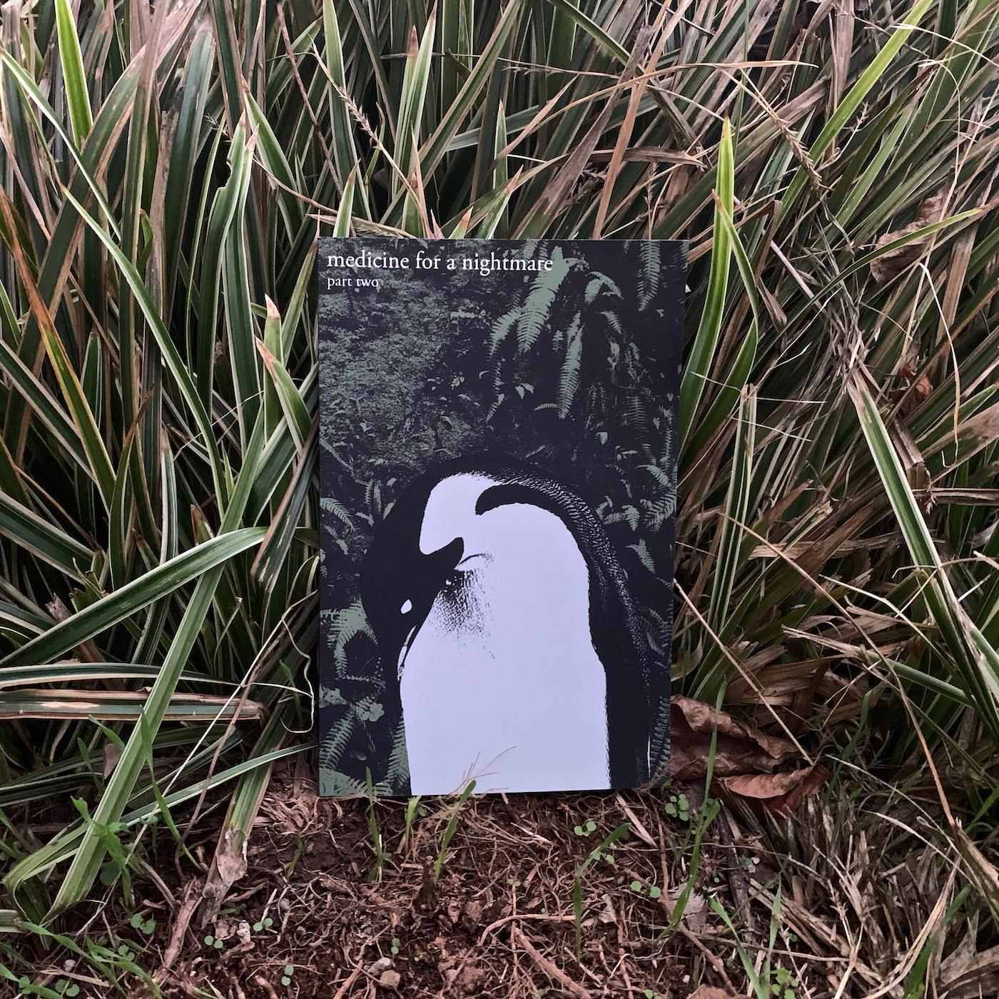 Part Two (Book & Audio Companion)