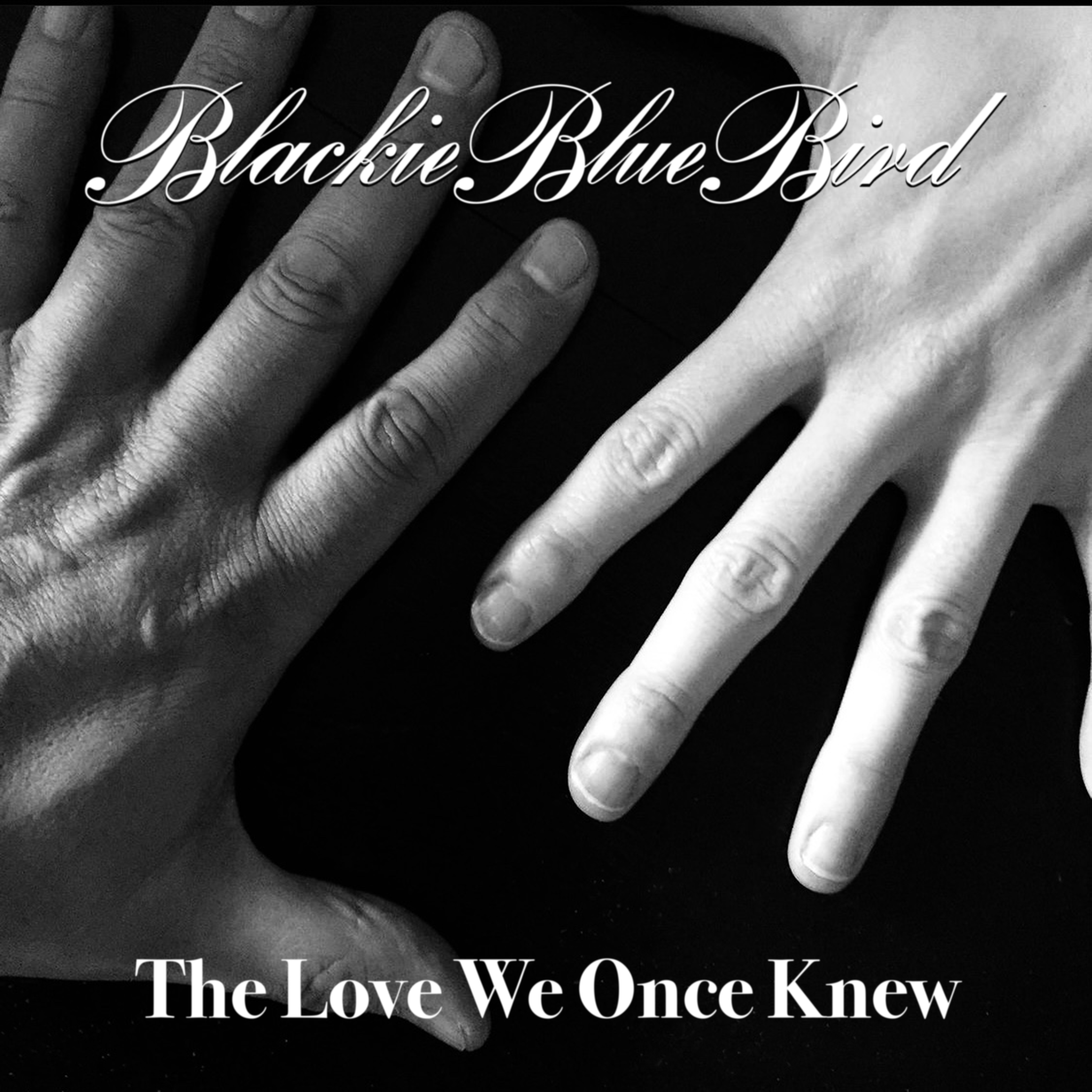 The Love We Once Knew