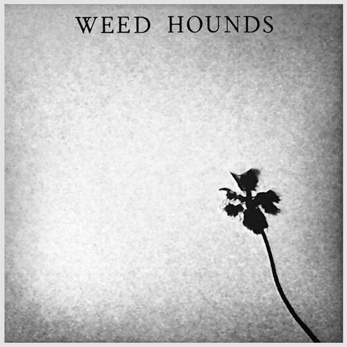 Weed Hounds -